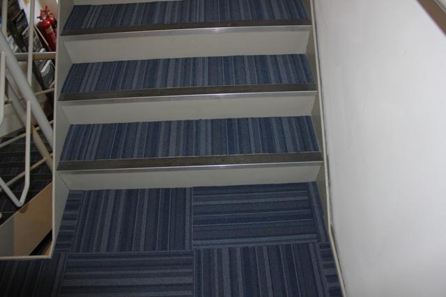 Carpet : Versatile Wood Flooring