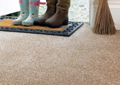 Stain Free Luxor Abingdon Carpet